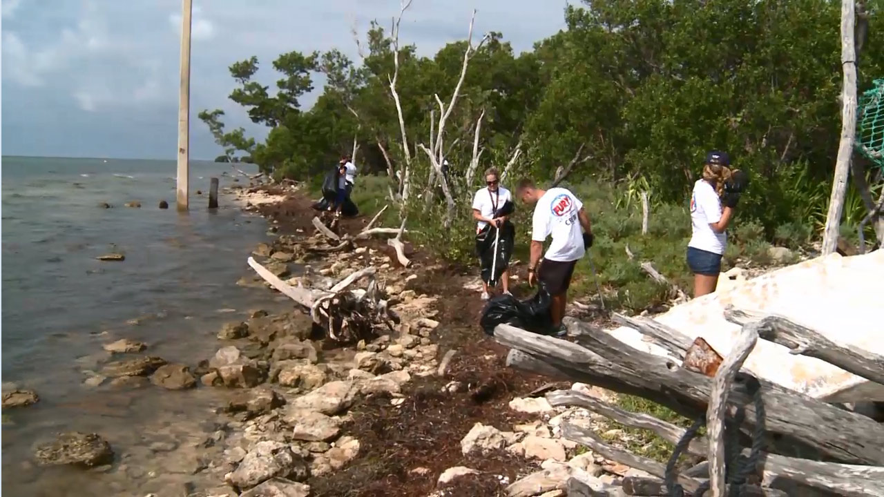 Fury Adventure Watersports Beach Clean Up - Did You Know?
