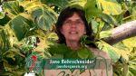 Jane Rohrschneider for Fantasy Fest Queen