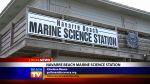 Navarre Beach Marine Science Station - Local News