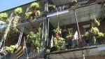 New Orleans Metropolitan Convention and Visitors Bureau