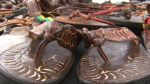 French Market Sandals - Gotta Shop