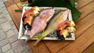Classic Seafood in the Florida Keys - Top 5