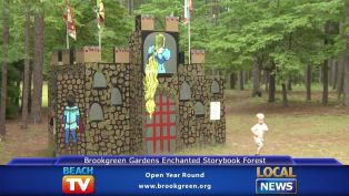 Brookgreen Gardens Storybook Forest - Local News