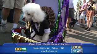 Krewe of Barkus Mardi Gras - Local News