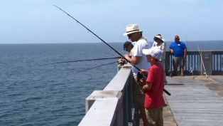 Best Way to Experience Pier Fishing - A Piece of Advice
