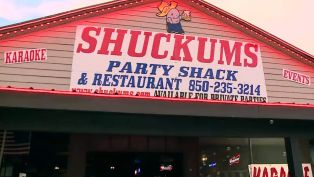 Shuckums Oyster Bar - Nightlife