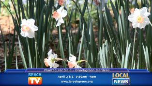 Plantacular Sale - Local News