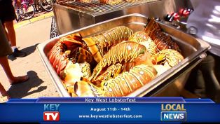 Key West Lobsterfest - Local News