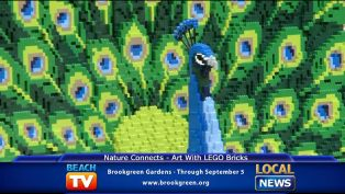 Art with Lego Bricks at Brookgreen Gardens - Local News