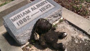Key West Cemetery Stuffed Bunny - Did You Know?
