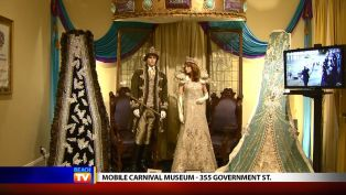 Mobile Carnival Museum - Local News