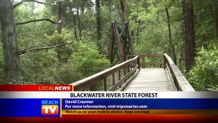 David Creamer from Blackwater River State Forest - Local News