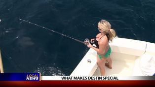 What Makes Destin Special - Local News