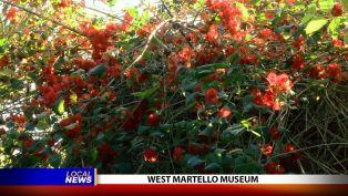 West Martello Museum - Local News