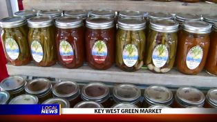 Key West Green Market - Local News