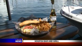 Hogfish Bar and Grill - Local News