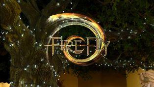 Firefly in Panama City Beach