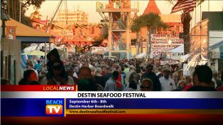 Destin Seafood Festival - Local News