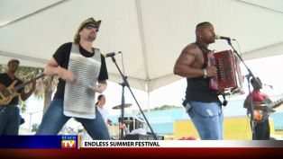 Endless Summer Festival - Local News
