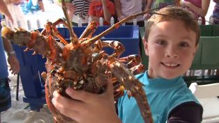 Schooners Annual Lobster Festival and Tournament
