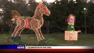 Celebration in the Oaks - Local News