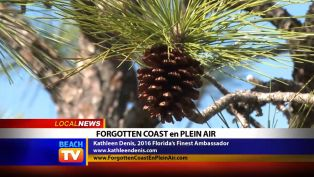 Forgotten Coast en Plein Air - Local News