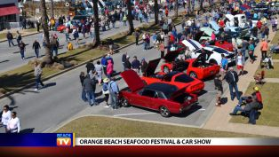 Orange Beach Seafood Festival & Car Show