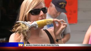 World Famous Blue Crab Festival - Local News