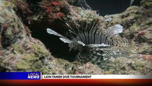 Chef Konrad Jochum at the Lion Tamer Dive Tournament - Local News