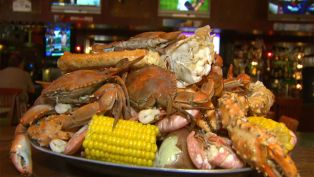 O'Quigley's Seafood Steamer and Oyster Sports Bar