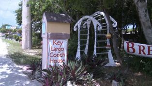 Key Largo Conch House's Dreaver Family - What's Your Story?