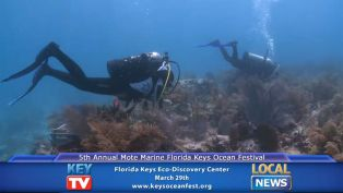 Florida Keys Ocean Fest - Local News