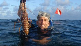 Lobster Season in the Florida Keys!