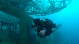 10 Top Dives in the Keys
