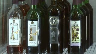 Duplin Winery Wine Tip - Where to...
