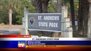 St. Andrews State Park - Local News