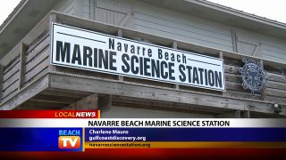 Navarre Beach Marine Science...