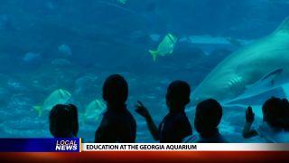 Education at the Georgia Aquarium...