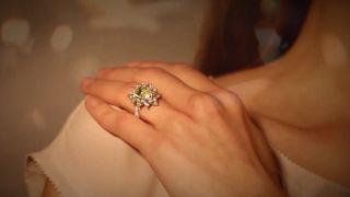 Extraordinary Rings at M.S. Rau