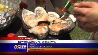 New Orleans Oyster Festival -...