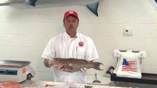 Destin Ice How to Pick Seafood - A...