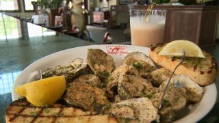 Best Oyster Bars from Destin, FL...