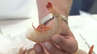 How to Prepare Shrimp - A Piece of...