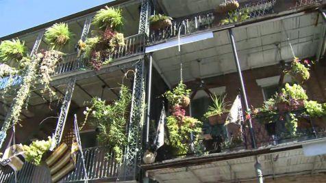 new orleans metropolitan convention and visitors bureau tripsmarter com. Black Bedroom Furniture Sets. Home Design Ideas