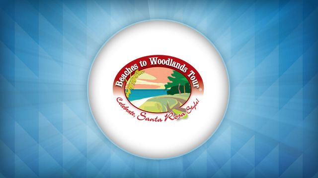 Beaches to Woodlands Tour