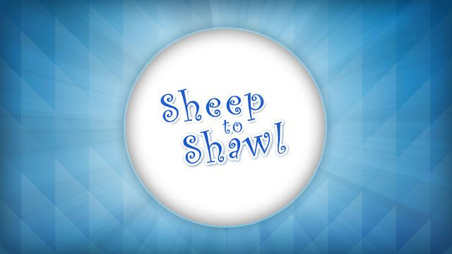 Atlanta's Sheep to Shawl Day