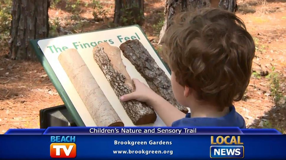 Children's Nature and Sensory Trail - Local News