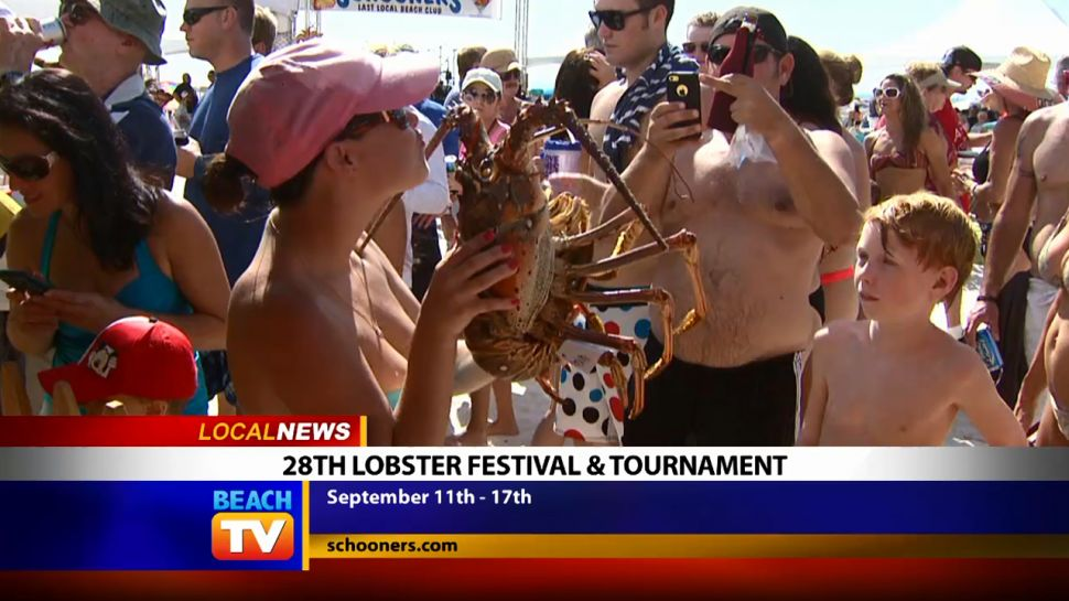 Schooners Lobster Festival & Tournament Co-Director Interview - Local News