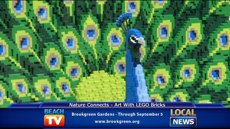 Art with Lego Bricks at Brookgreen Gardens - Local News