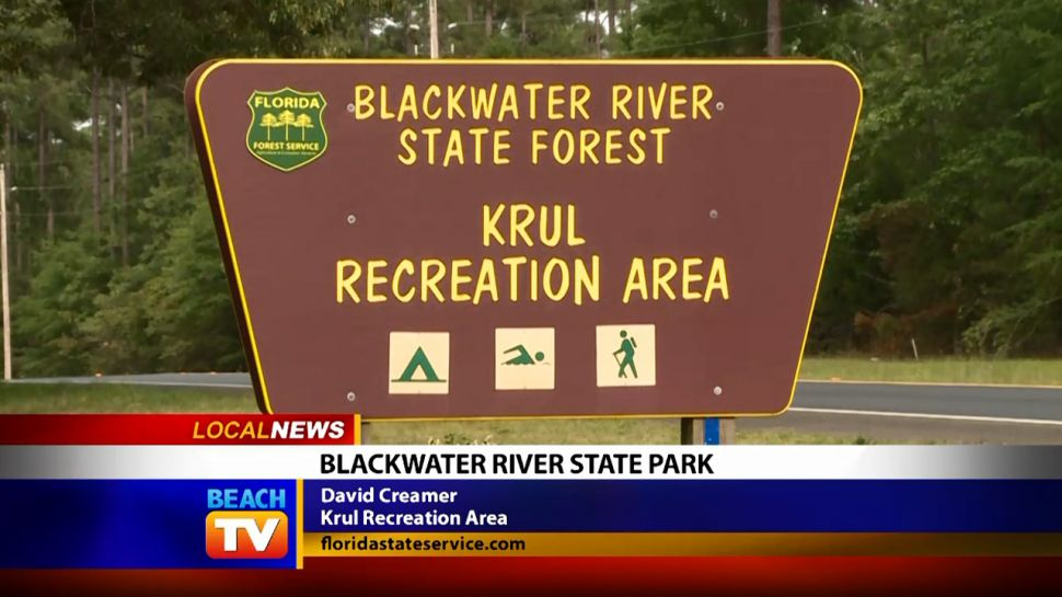 Blackwater River State Forest in Northwest Florida - Local News
